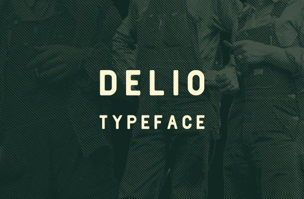 Delio Typeface Free