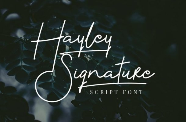 Hayley Signature Font Free