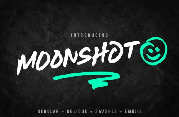 Moonshot Font Family Free