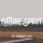 Nature Spirit Vintage Font Free