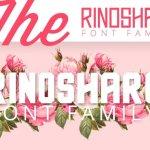 Rinoshare Font Family Free