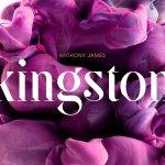 SF Kingston Font Family Free