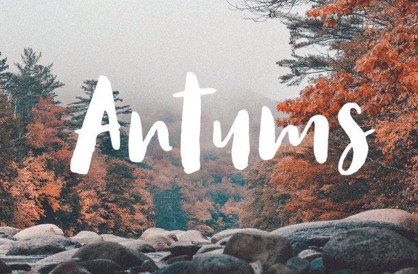Antums Script Font Free