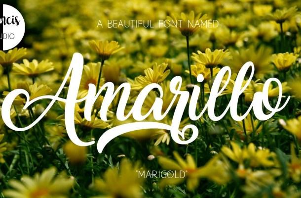 Amarillo Script Font