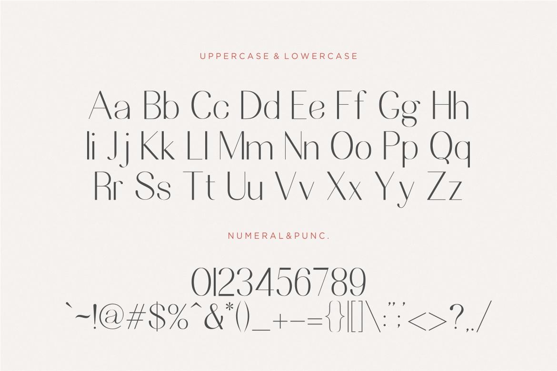 Nesans Sans Serif Font-3
