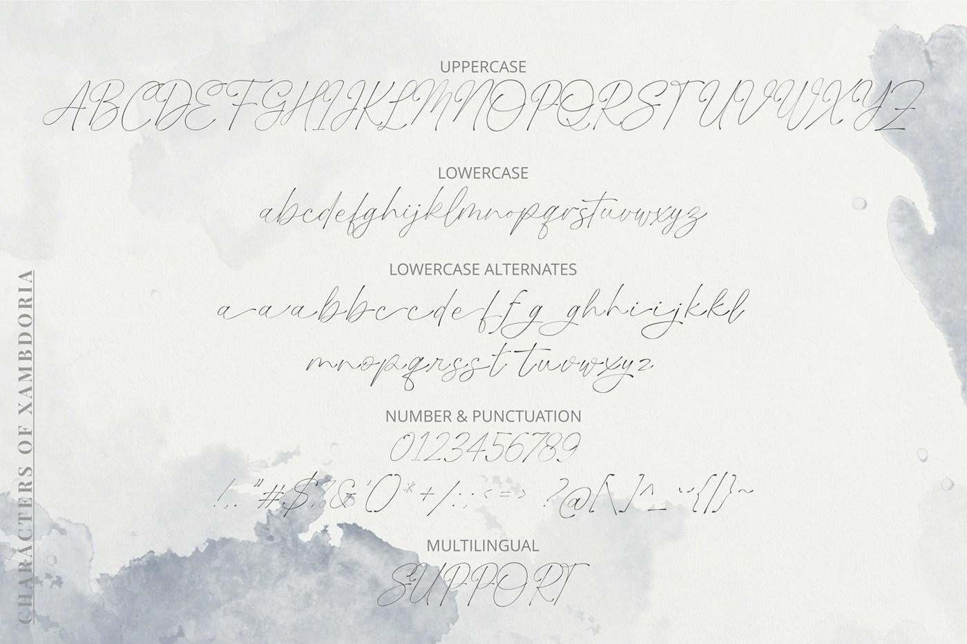 Xambdoria-Luxury-Organic-Handwritten-Font-4