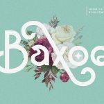 Baxoe Sans Fancy Typeface