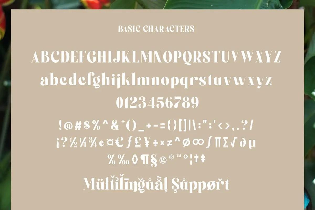 Boiling Variable Serif Font-3