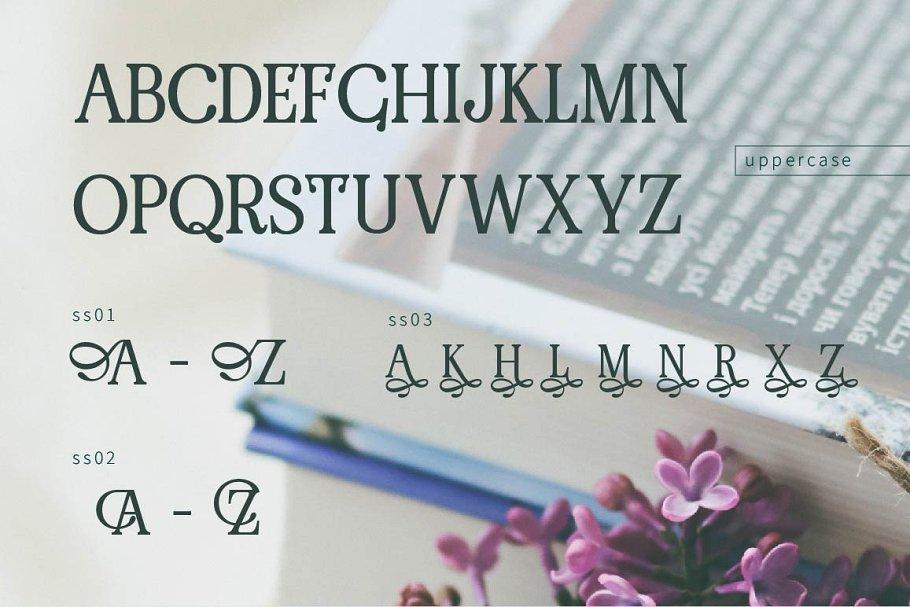 pRenda Bold Modern Serif Font03