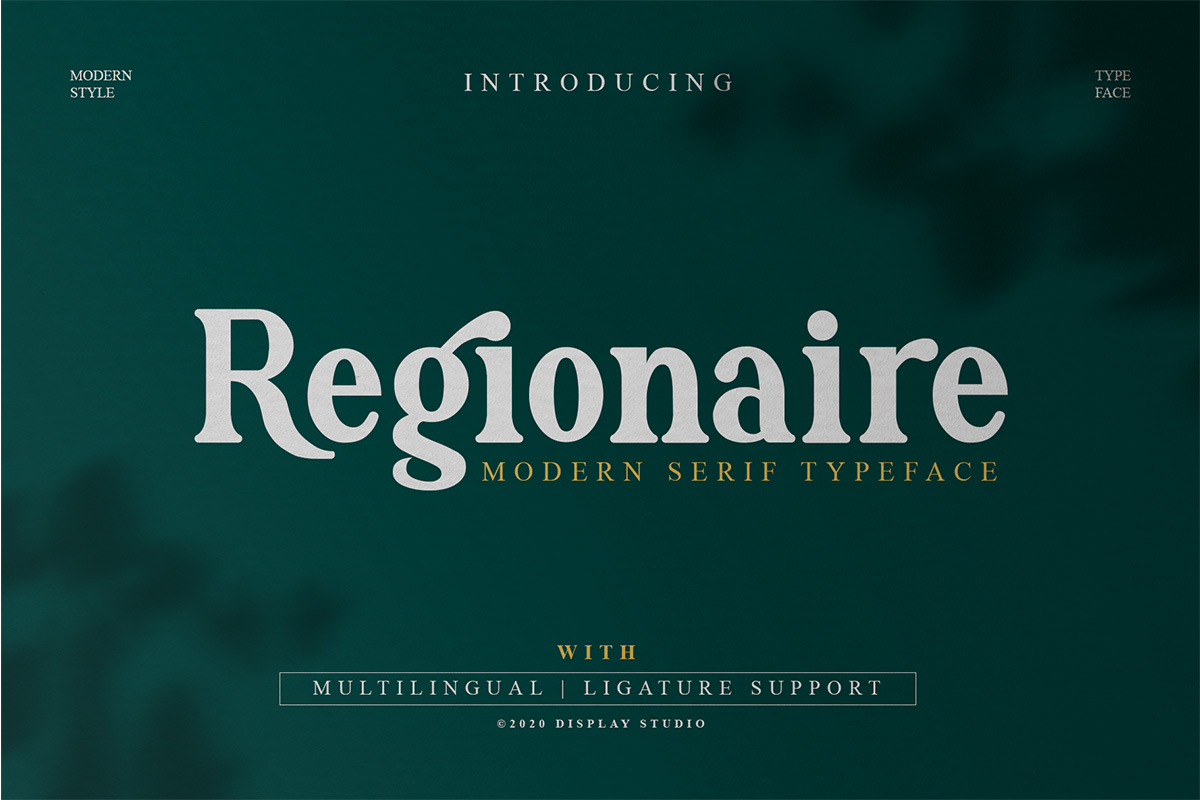 Regionaire Serif Font01