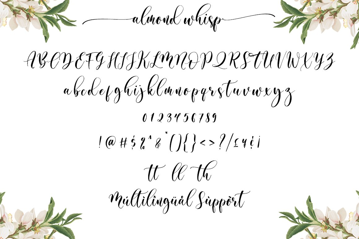 Almond Whisp Modern Calligraphy Font-3