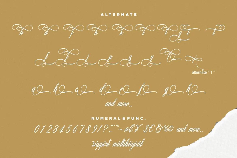 Amorista Calligraphy Script Font-3