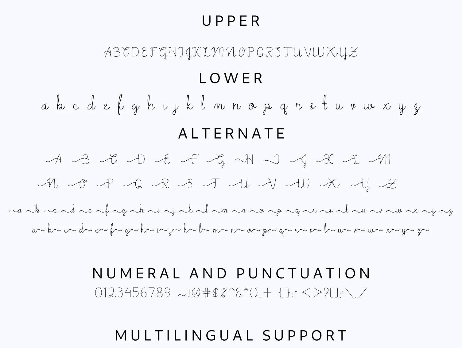 Amsterdam Script Font-3