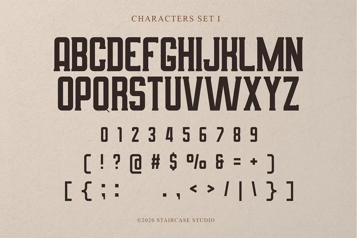 Amsterdam Signature Display Script Font Duo-3