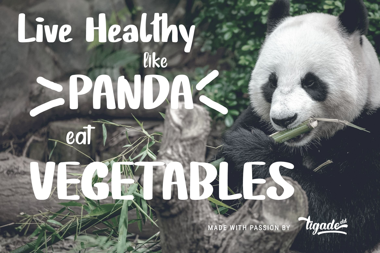 Baby Panda Display Font-2