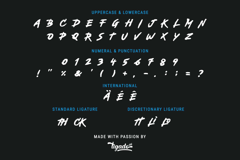 Backbones Brush Script Font-3