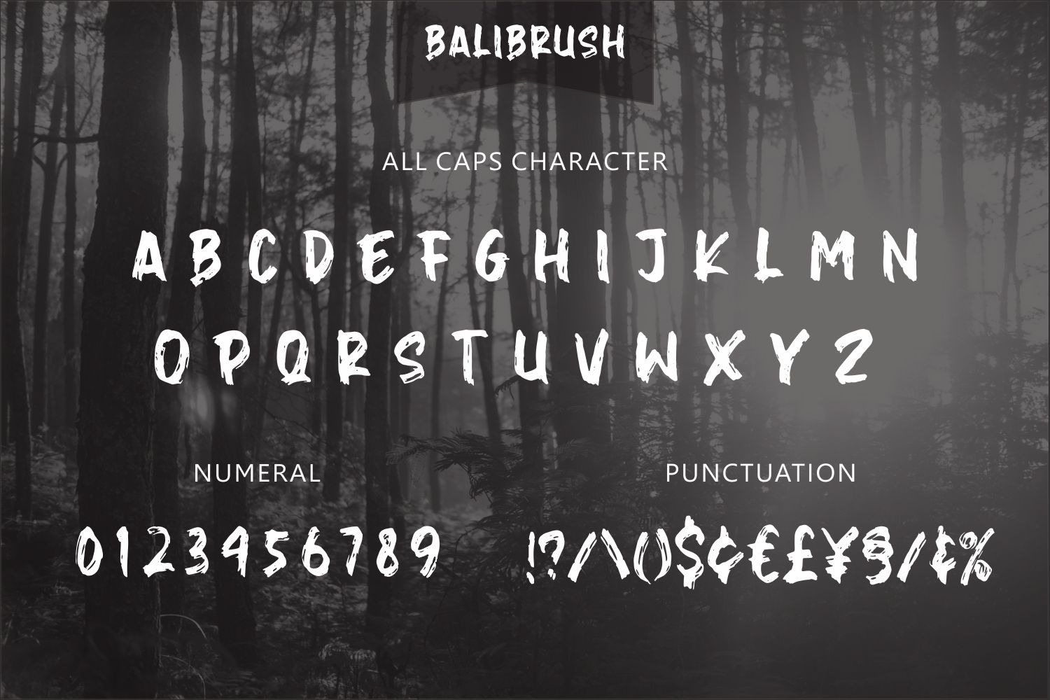 Balibrush Rough Brush Font-3