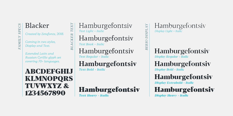 Blacker Serif Font Family-3