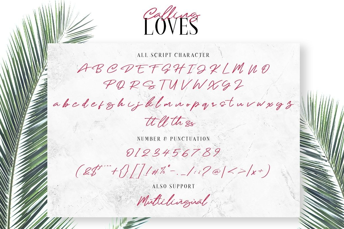 Calling Loves Script Font Duo-3 (1)