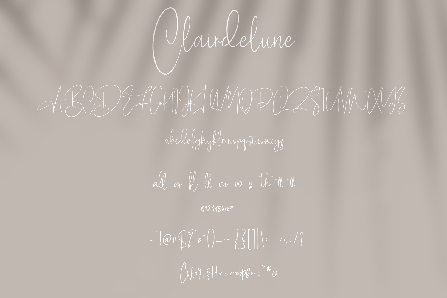 Clairdelune Calligraphy Modern Script Font-3