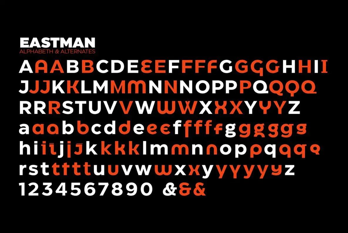 Eastman Sans Serif Font-3