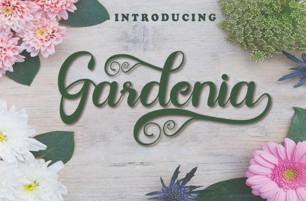 Gardenia Script Calligraphy Font
