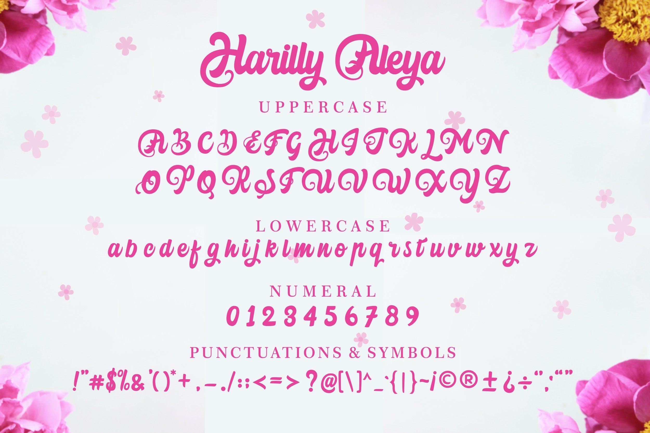 Harilly Aleya Bold Script Font-3