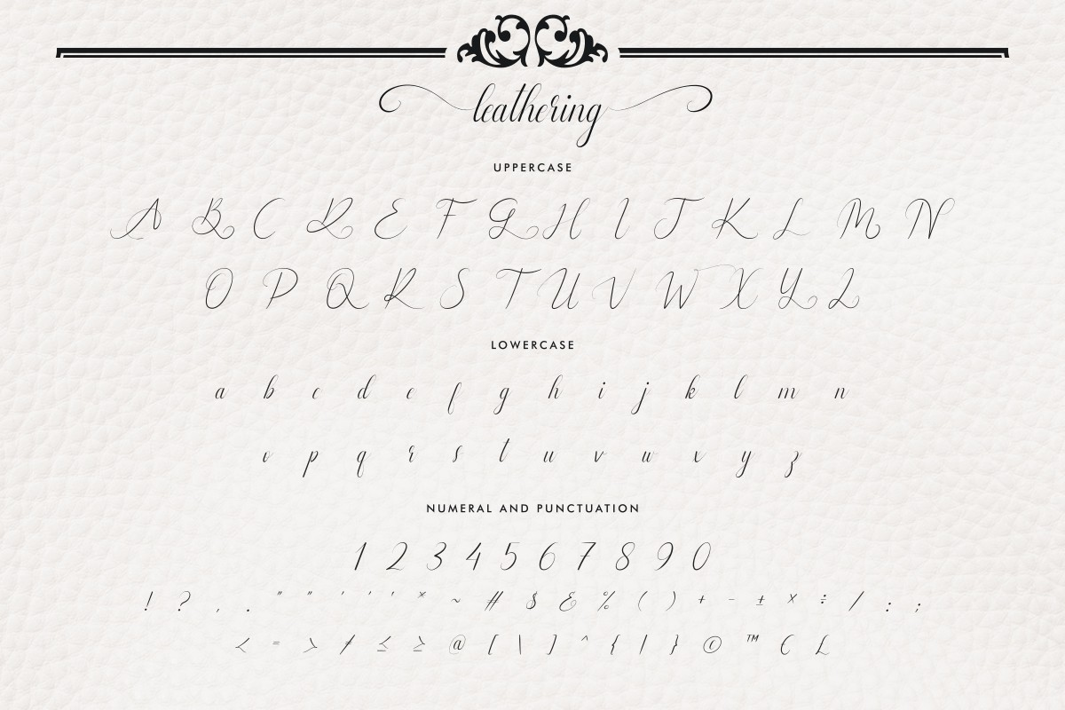 Leathering Calligraphy Script Font-3