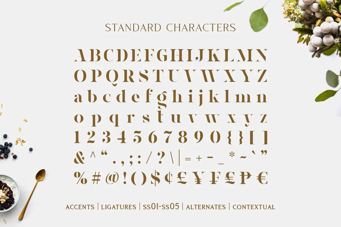 Magnies Minimal Serif Font-3