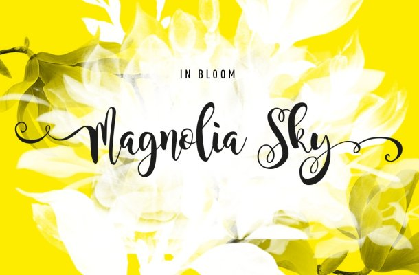 Magnolia Sky Calligraphy Font