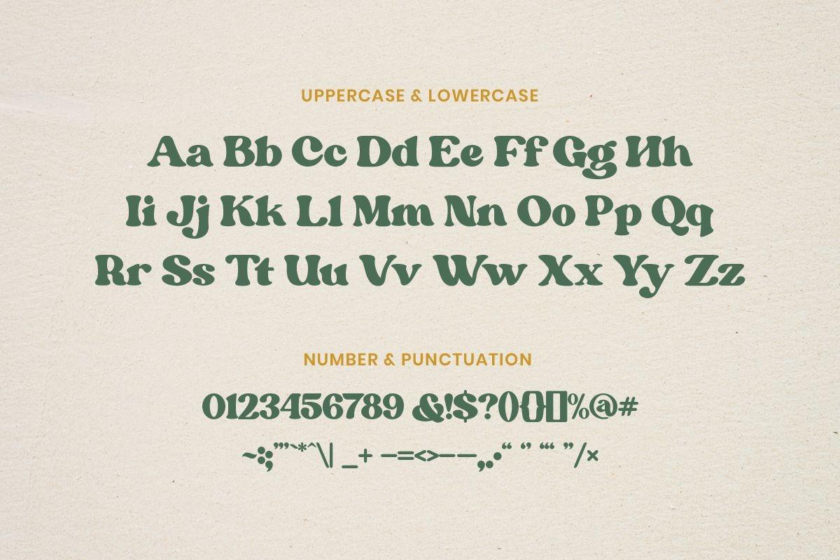 Margin Retro Serif Font-3