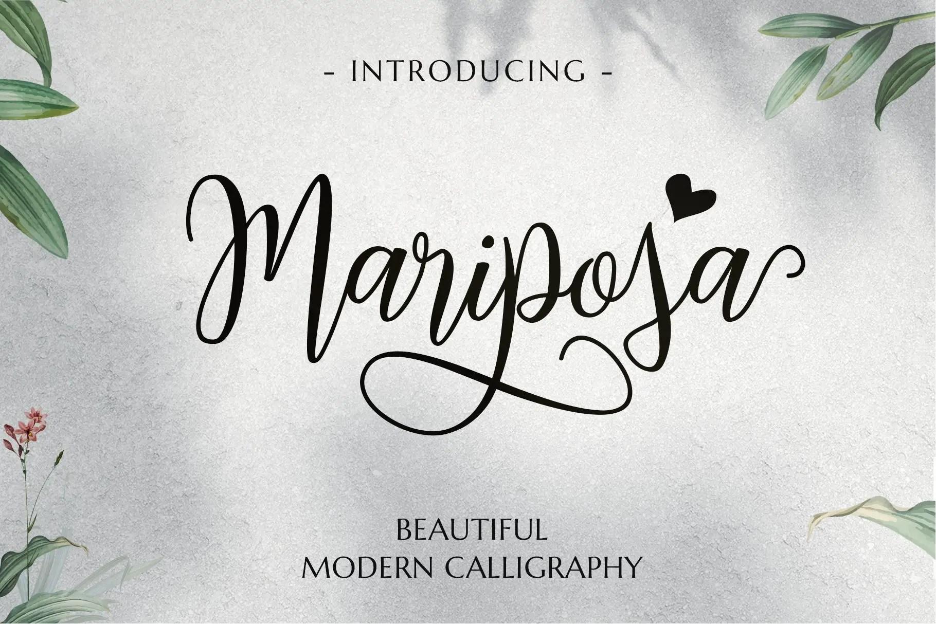 Mariposa Script Calligraphy Font-1