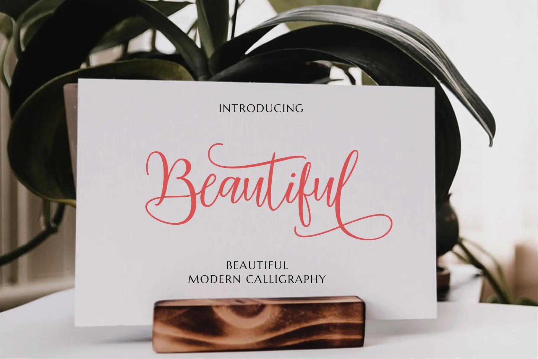 Mariposa Script Calligraphy Font-2