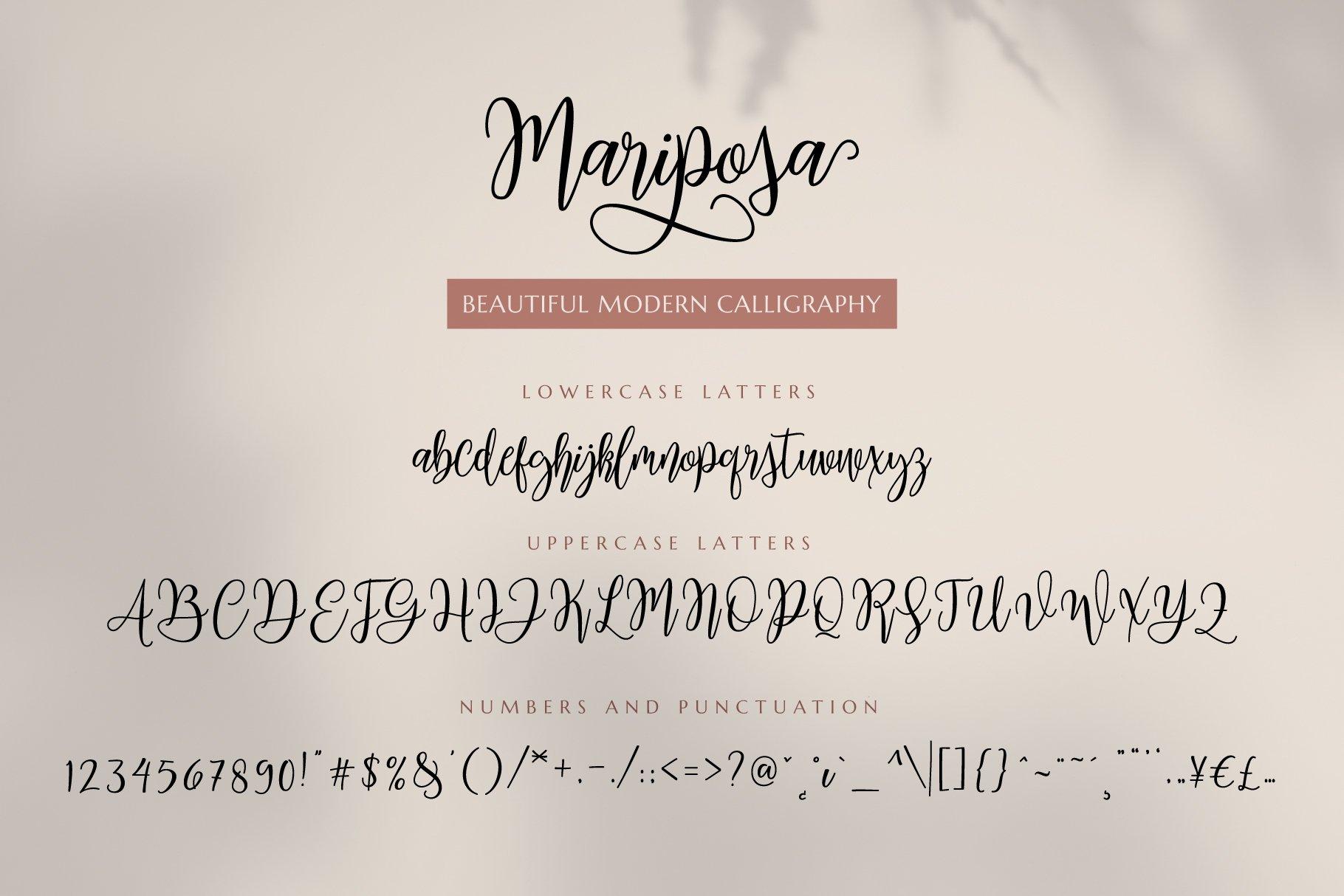 Mariposa Script Calligraphy Font-3