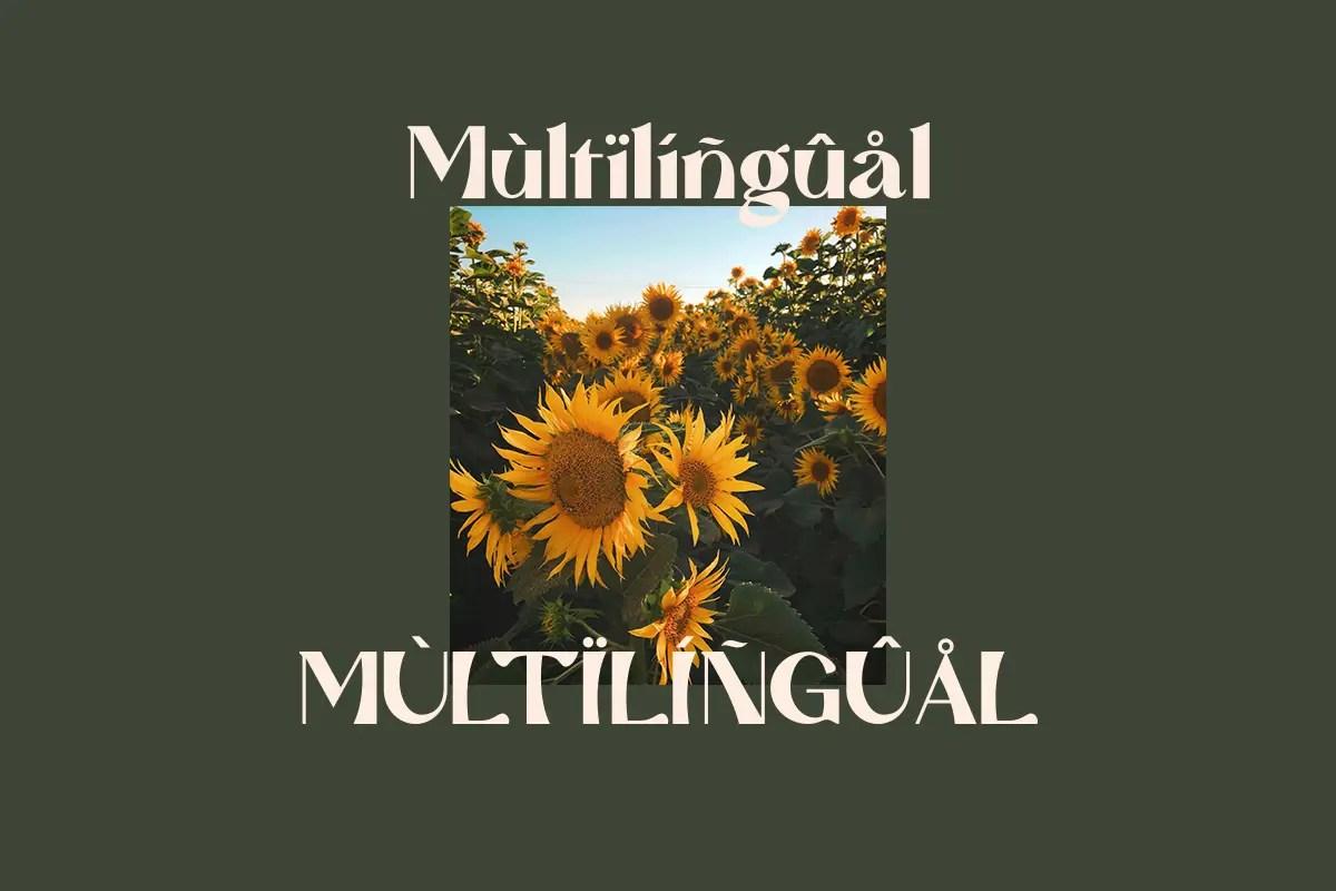 Mattire Modern Serif Typeface-2