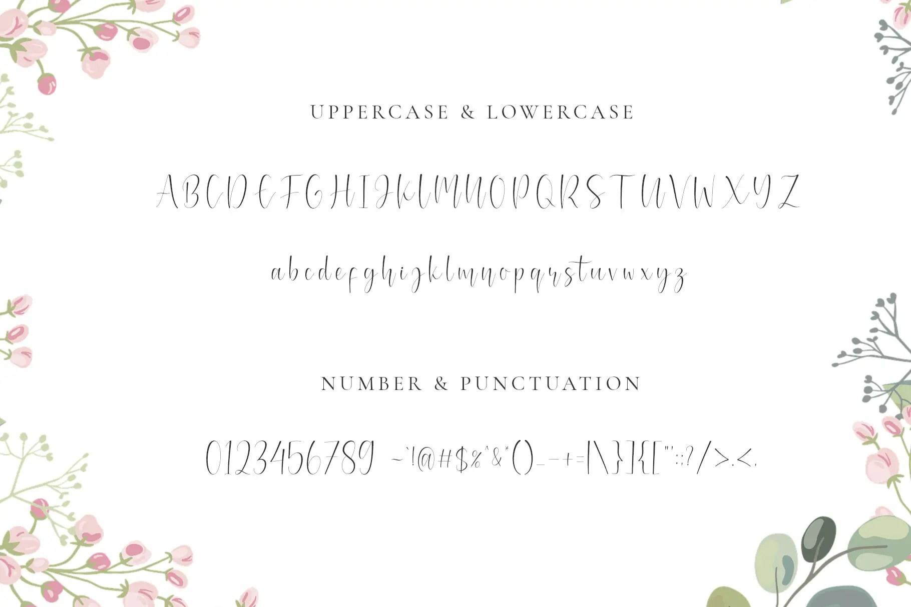 Mianty Sweet Calligraphy Script Font-3