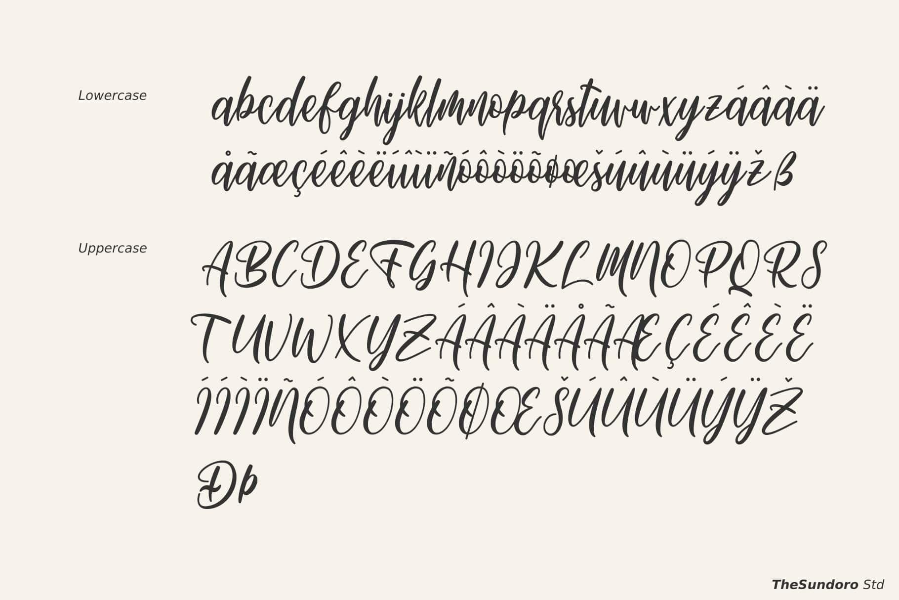 Michellate Handwritten Script Font-3