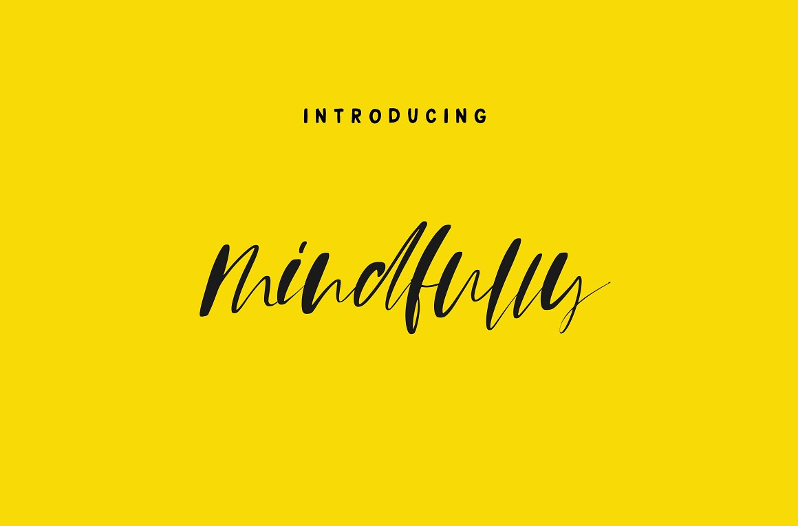 Mindfully Signature Calligraphy Script Font Family-1