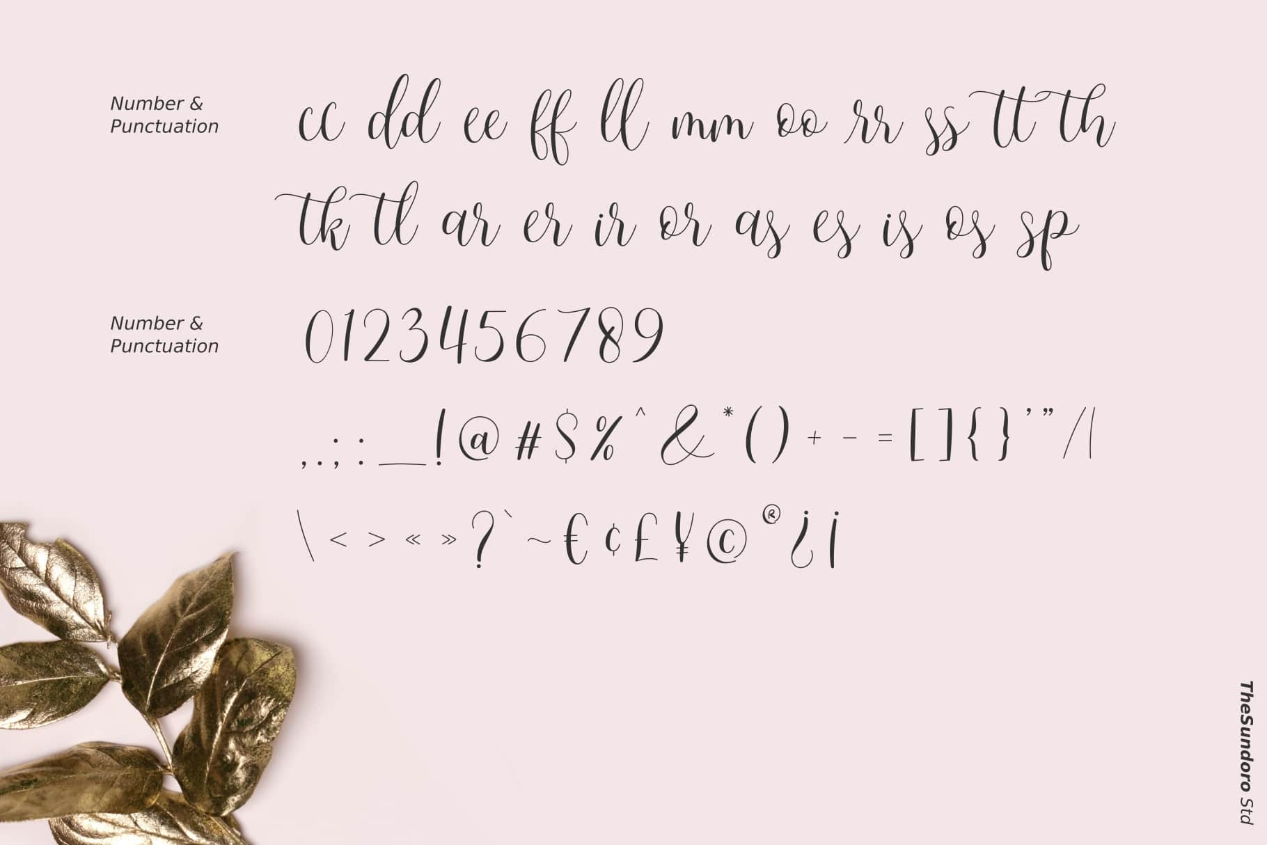 Mother Vanilla Calligraphy Script Font-4