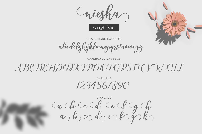 Niesha Modern Calligraphy Script Font-3