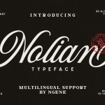 Nolian Script Typeface