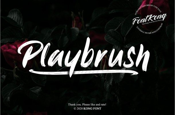 Playbrush Script Font