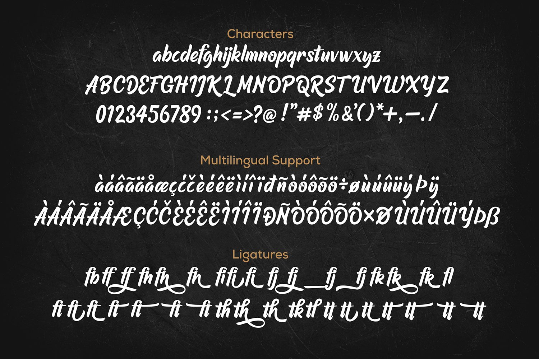 Raphtalia Stylish Script Font-3