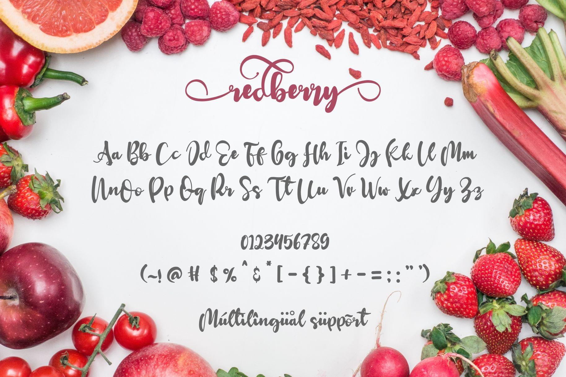 Redberry Modern Calligraphy Script Font-3