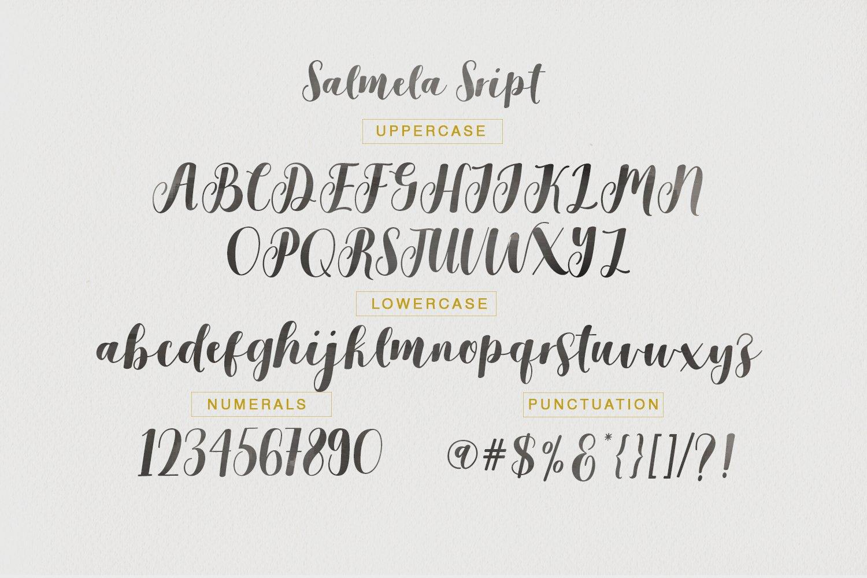 Salmela Script Calligraphy Font-3