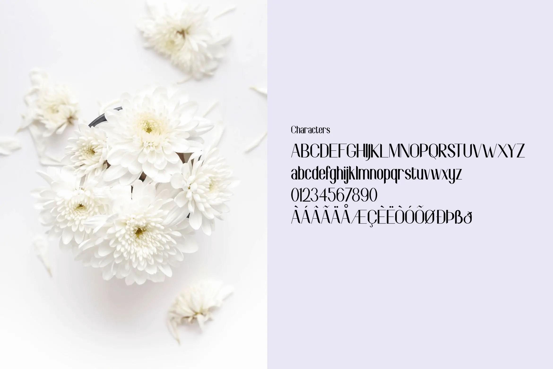 Shopia Sans Serif Font-3