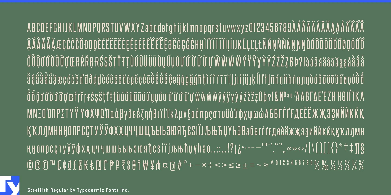 Steelfish Sans serif Font-3