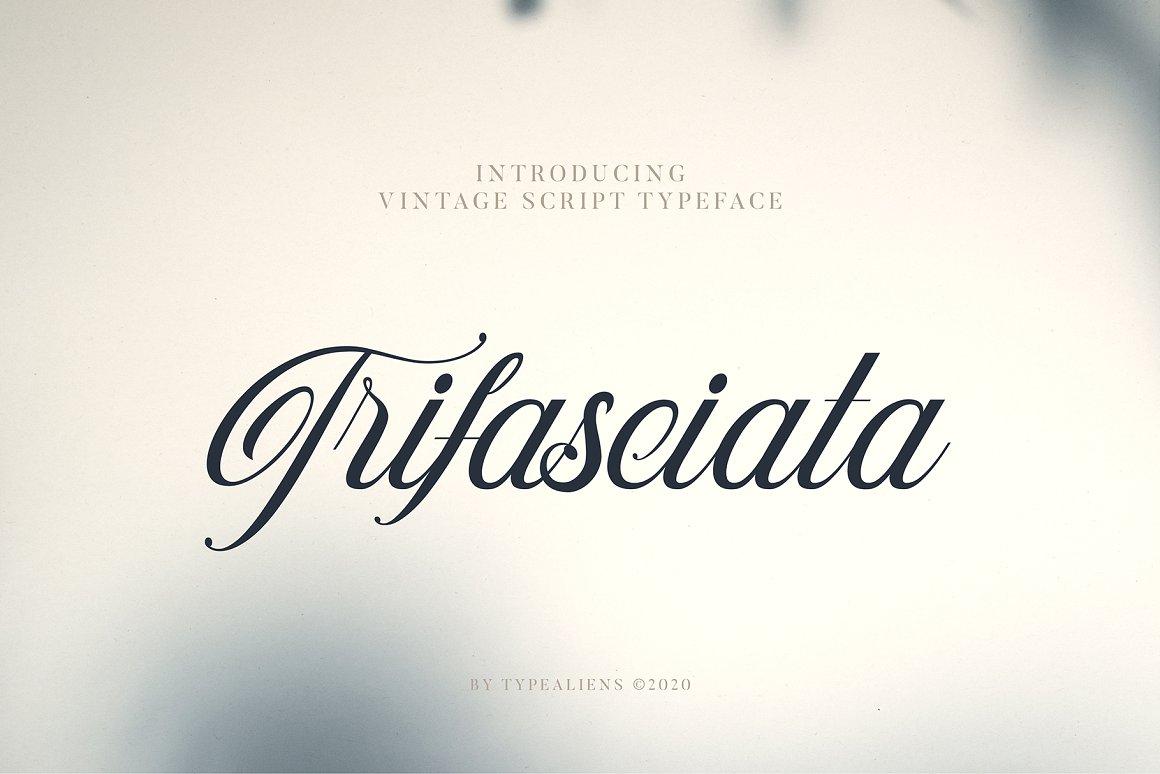 Trifasciata Script Typeface-1
