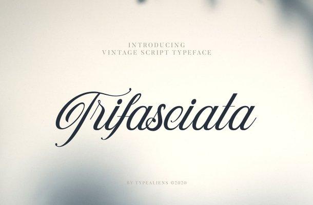 Trifasciata Script Typeface