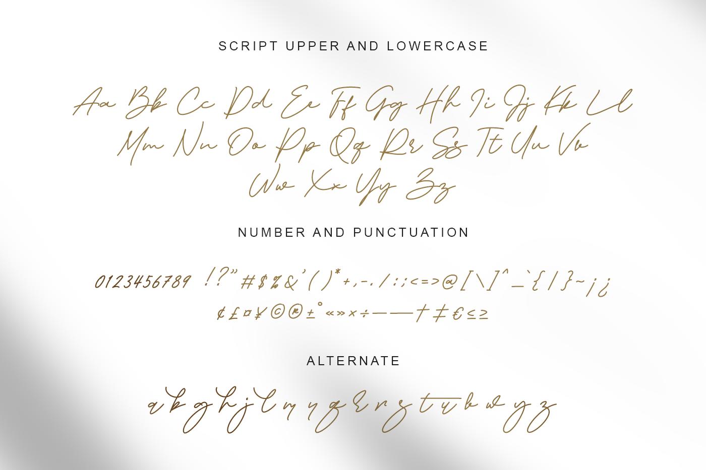 Visual Hollow Serif Font Duo-4